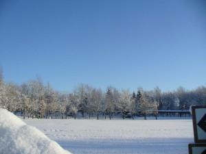 冬休み平岡公園にぎわいフェスタ
