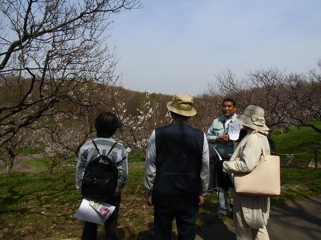 平岡公園梅林ツアー