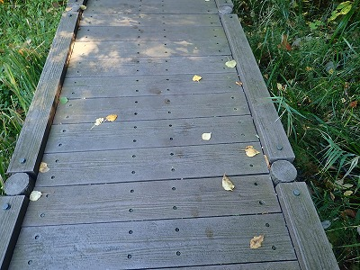 木道の足跡