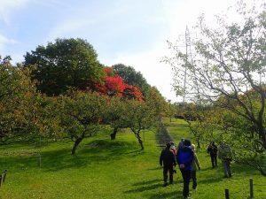 平岡公園ツリーウォッチング