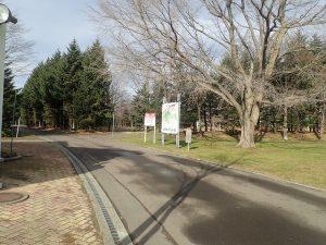 事務所前園路