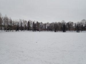 冬休み平岡公園にぎわいフェスタ(1月11日)について